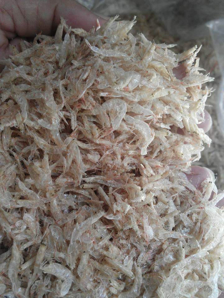 DRIED BABY SHRIMP
